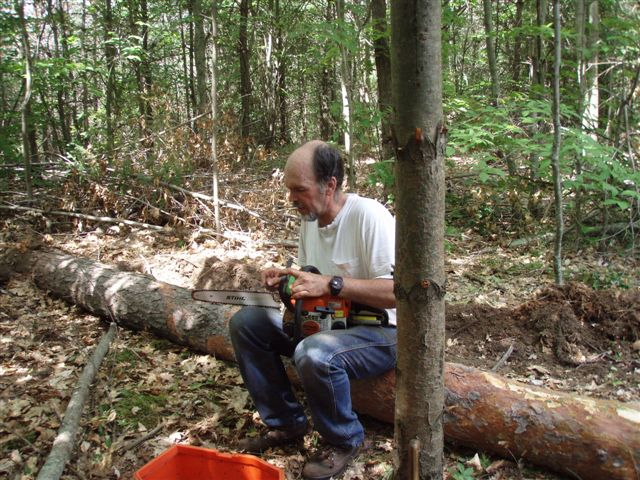 Bill sharpening Chain Saw