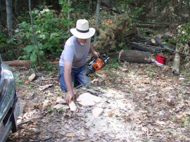 Bill's stump