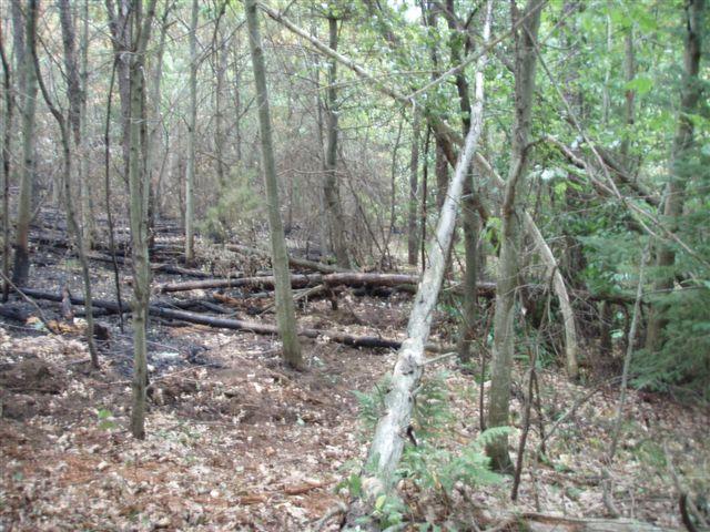 Lightning fire on property 2