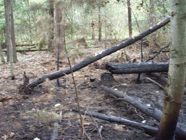 Lightning fire on property 4
