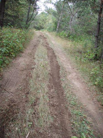 Hauling Lumber Trails 3