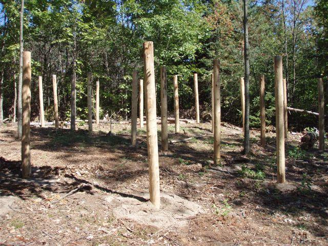 4th Circle Woodhenge 2