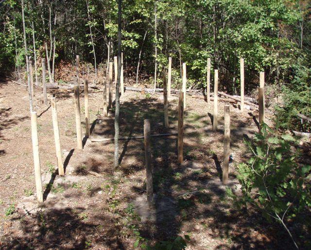 4th Circle Woodhenge 6 Just Before True Noon