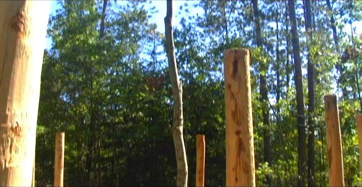 Woodhenge Ceremony - At the Woodhenge