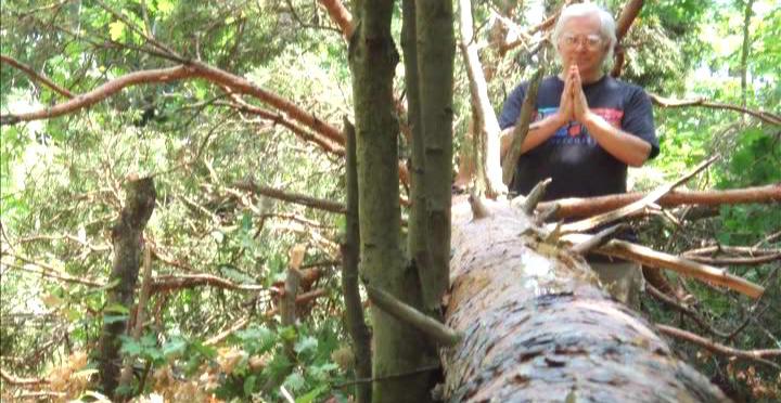 Woodhenge Ceremony - Prayer to the Fallen Pine