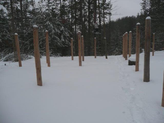 Forest Woodhenge - Groundhog Day 3