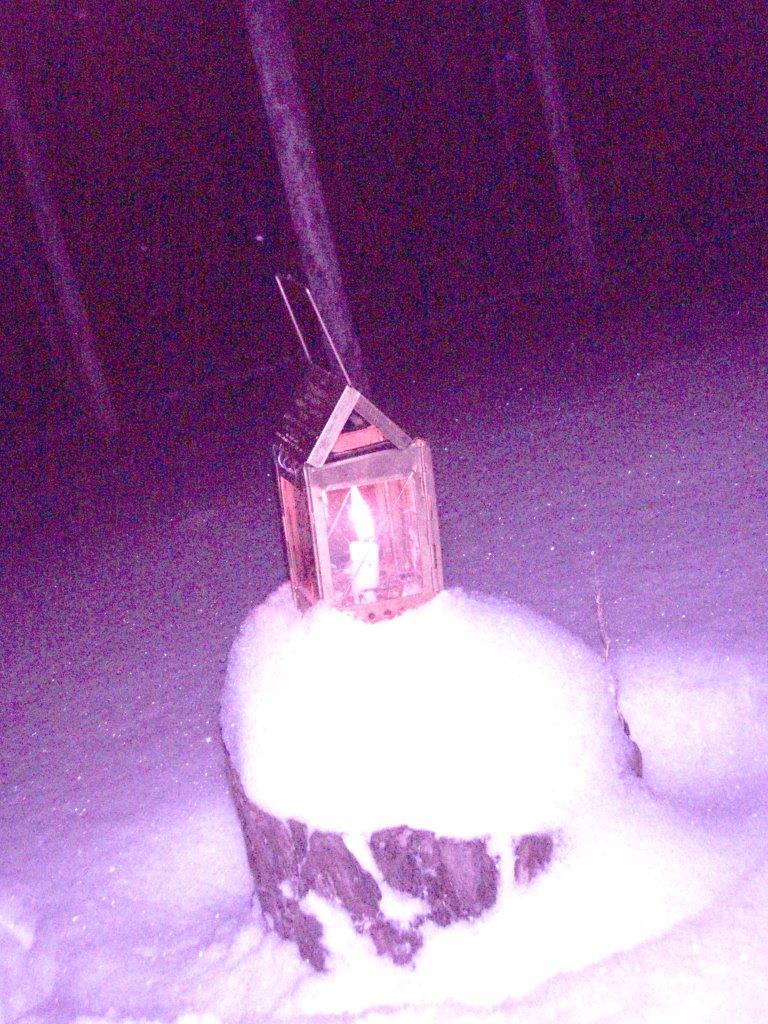 Forest Woodhenge - Solstice Meditation -Lantern
