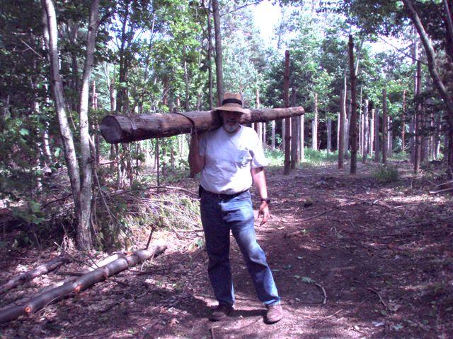Bill Frey Haulin' logs!