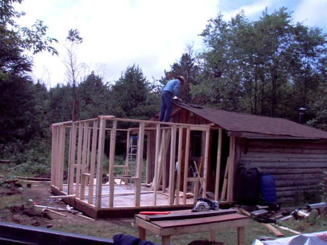Cabin - Walls and Roof (1)