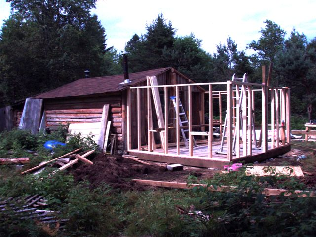 Cabin - Walls and Roof (3)