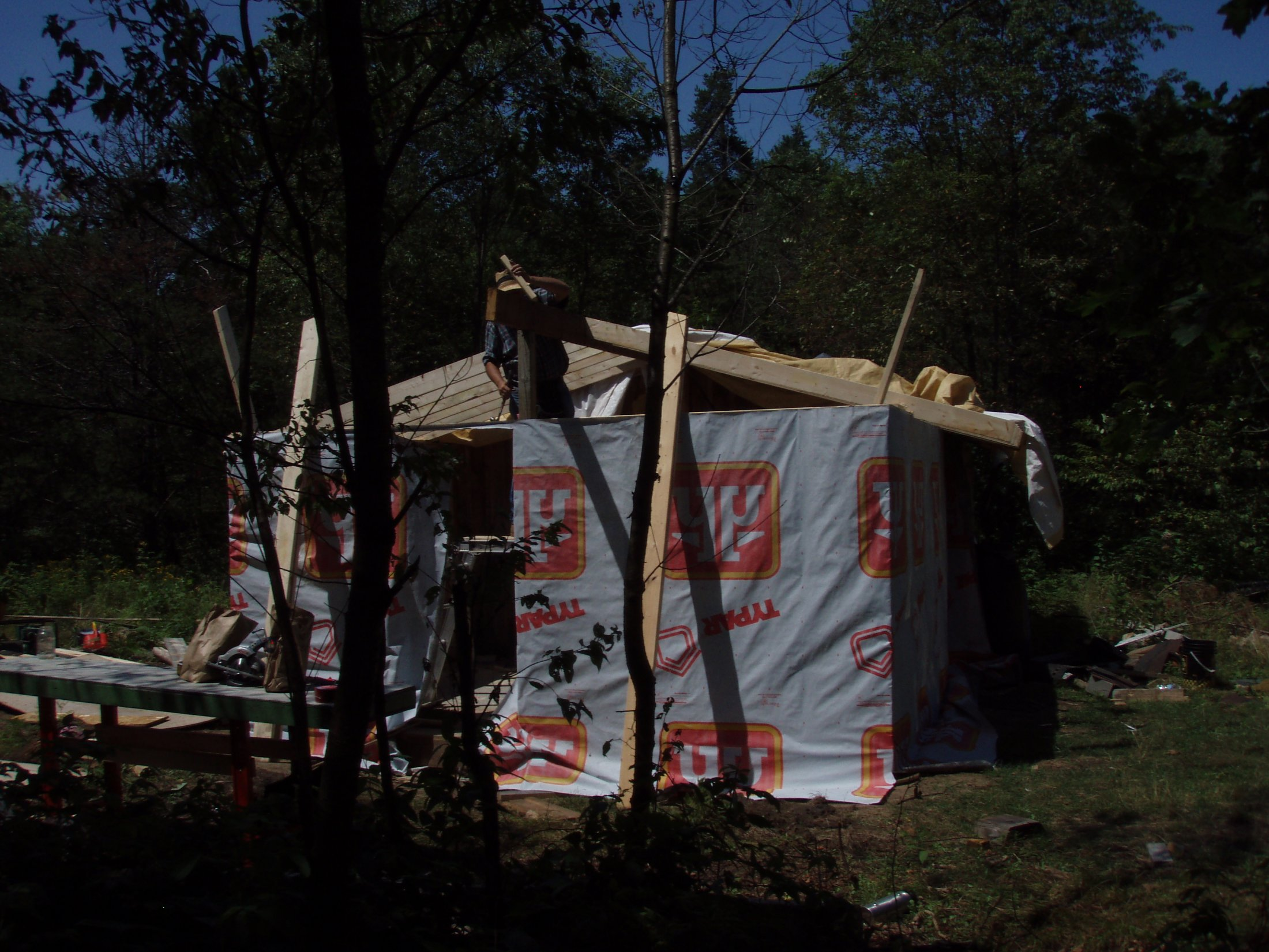 Cabin -Building the Roof (8)