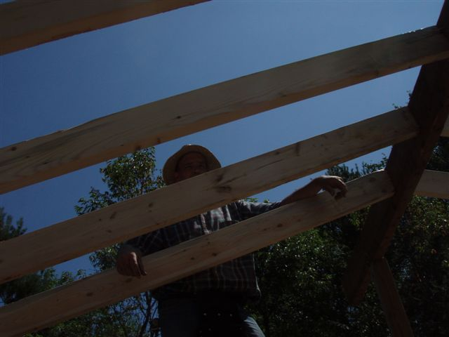 Cabin -Building the Roof (11)