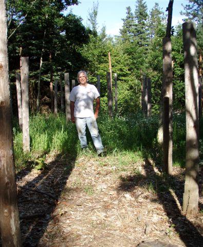 Midsummer - Robin in Woodhenge