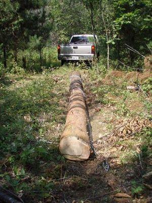 Haulin' lumber 2