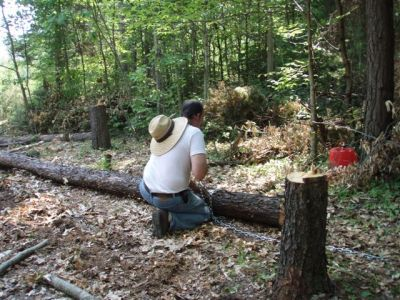 Bill chaining lumber
