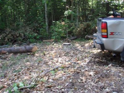 Truck remembers Oak tree