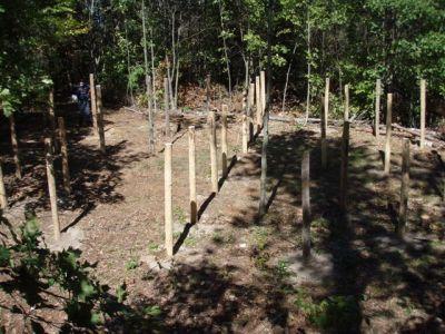 4th Circle Woodhenge 6 exactly at True Noon