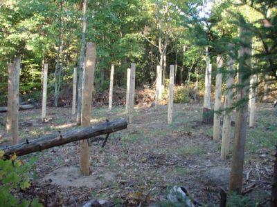 Woodhenge Looking West