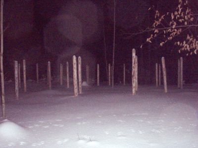 Forest Woodhenge - Winter Solstice night