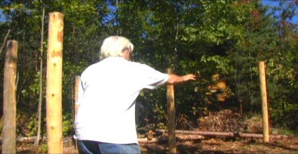 Woodhenge Ceremony - Throwing Flowers West