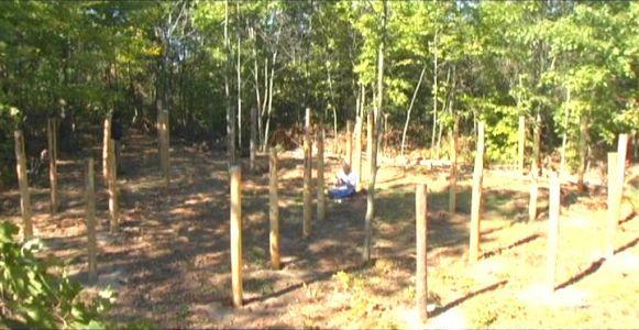 Woodhenge Ceremony - Robin Chanting the I Ching 11