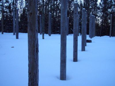 Forest Woodhenge - Winter Solstice - N/S Axis