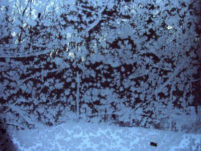 Forest Woodhenge - Frost on Cabin's Window