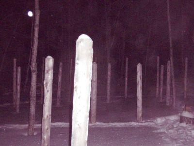 Forest Woodhenge - Solstice Meditation (5)