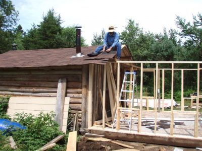 Cabin - Walls and Roof (2)