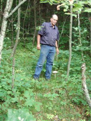 Mushroom - Toadstool Beside Bill Frey