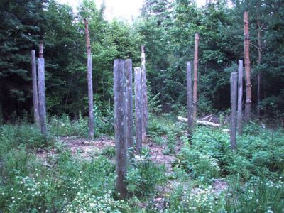 Forest Woodhenge East View