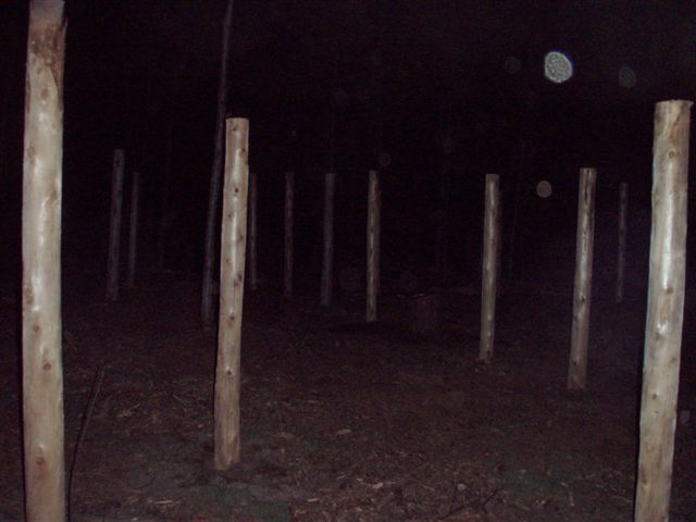 Night Time at the Woodhenge with orbs!