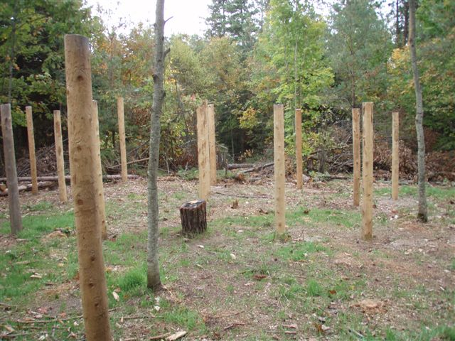 Forest Woodhenge - East View