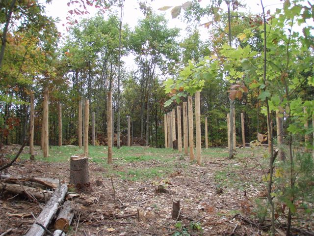 Forest Woodhenge - North View
