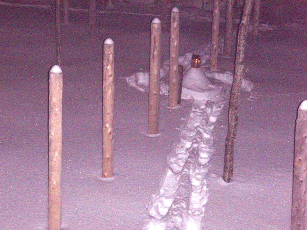 Forest Woodhenge - Winter Solstice night - Silent Night!