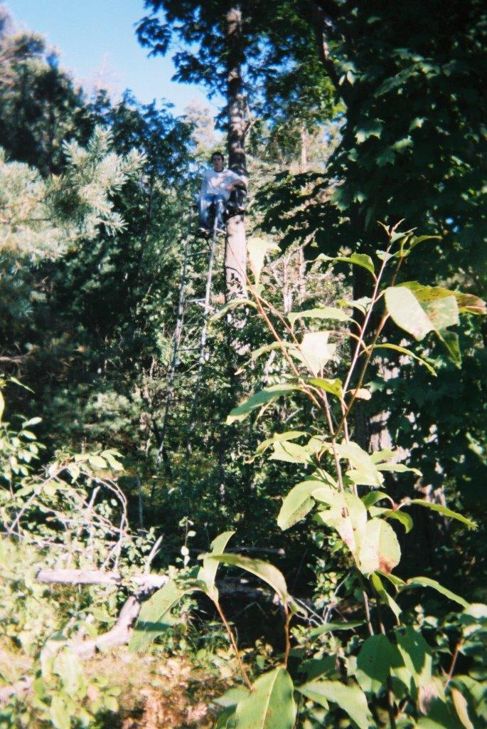 Justin Armstrong in Tree Stand