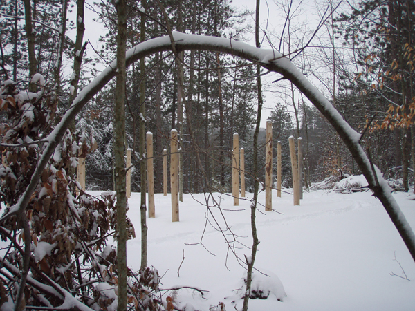 Forest Woodhenge - The Tree Arch
