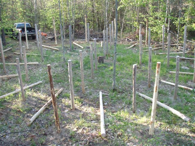 16 Posts In- 16 more ready to go!