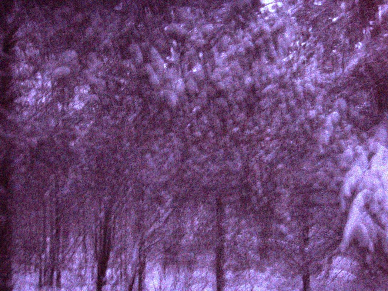 Forest Woodhenge - Winter Solstice - Midnight Meditation! (3)