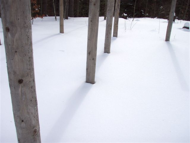 Midwinter at noon - the Shadows align!