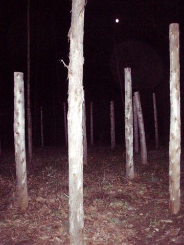 Woodhenge Full Moon at Midnight! (2)