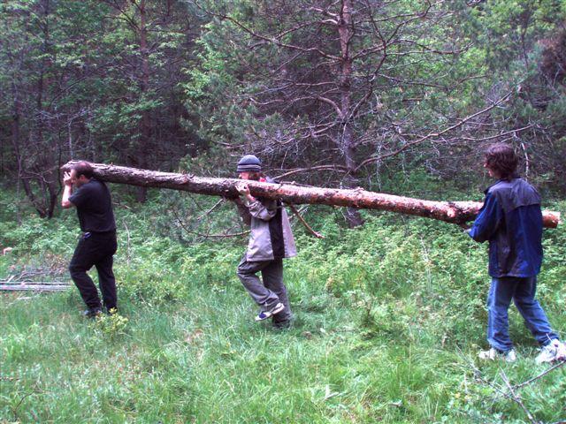 Haulin'  - Kyle, Dave and Sam