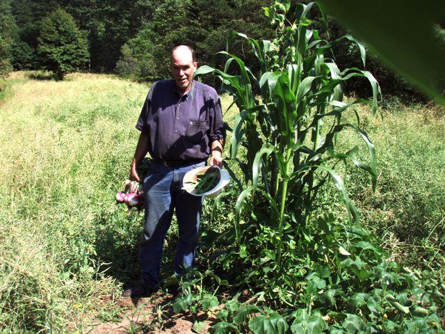 Garden Mound: Corn, Beans, Squash