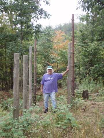 Forest Woodhenge Fall Equinox Robin Armstrong