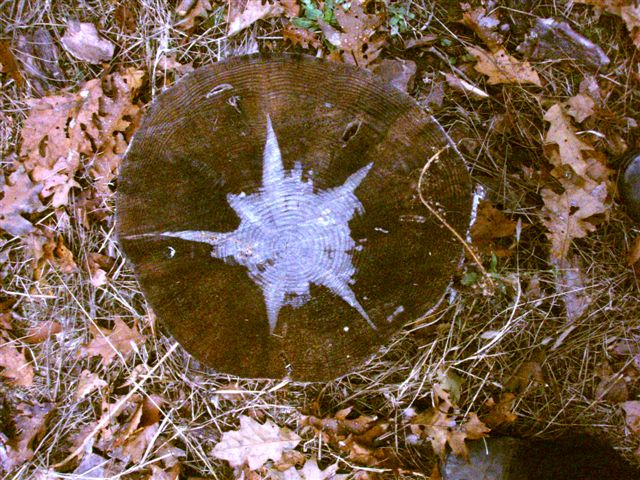 Star Stump