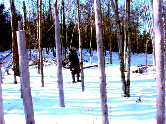 Winter Solstice: Igor