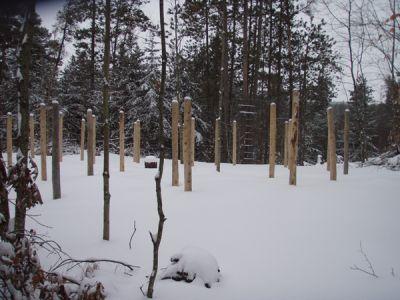 Forest Woodhenge - Groundhog Day