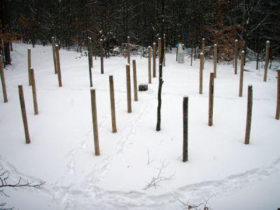 Forest Woodhenge - Groundhog Day 2