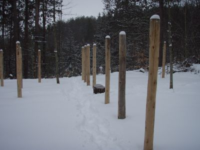 Forest Woodhenge - North-South axis