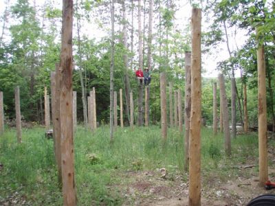 Forest Woodhenge - Jimmy Ayers & Bill Frey in the Tree Stand